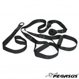Pegasus® Ιμάντες Ενδυνάμωσης (Suspension Trainer) Β 0999